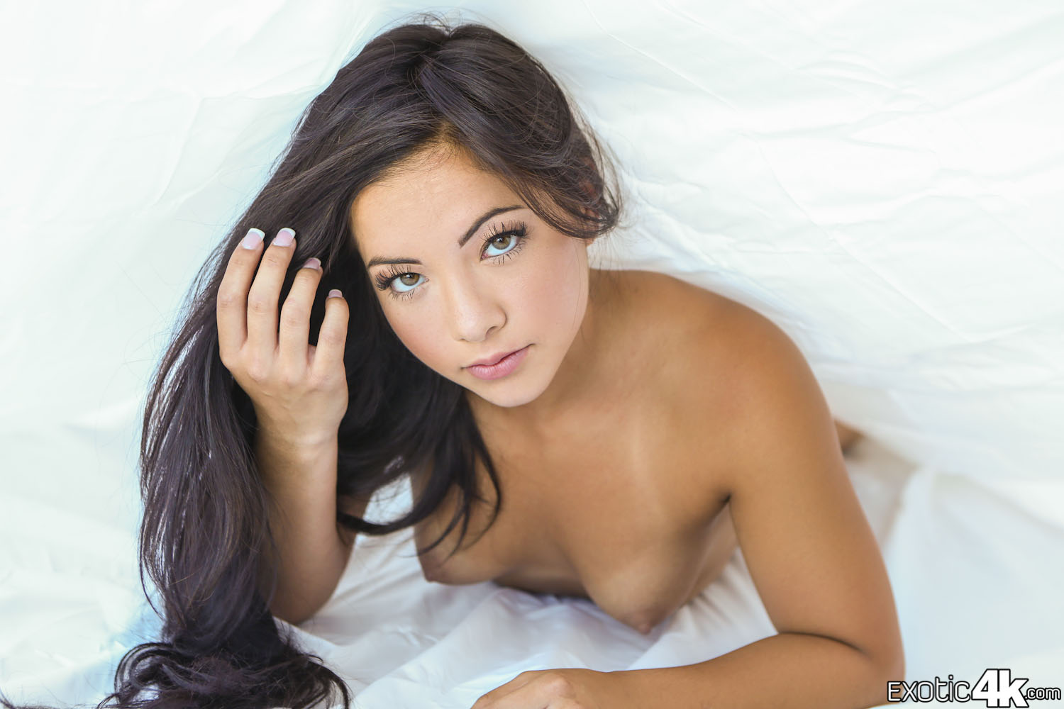 nude and sexy pics of female pornstars